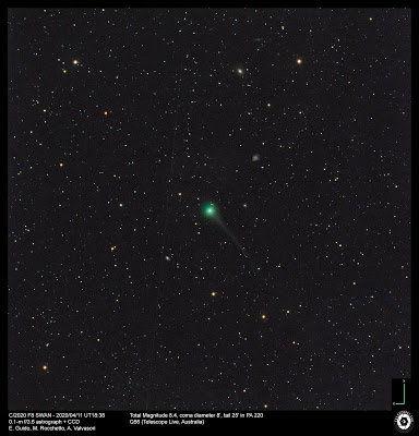 C/2020 F8 (SWAN)-  Ernesto Guido, Marco Rocchetto, Adriano Valvasori (Telescope Live)